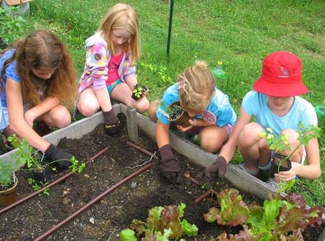 family-food-storage-why-your-family-should-have-a-garden
